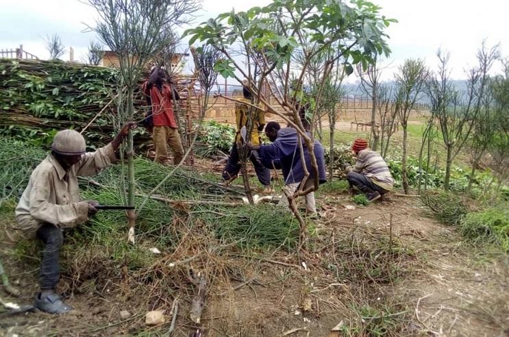 El Colegio Veterinario de Jaén colabora en un proyecto solidario en Burundi