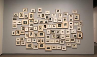 Exhiben la relación artística de Francisco Toledo y la Fotografía en la exposición Lu'Biaani