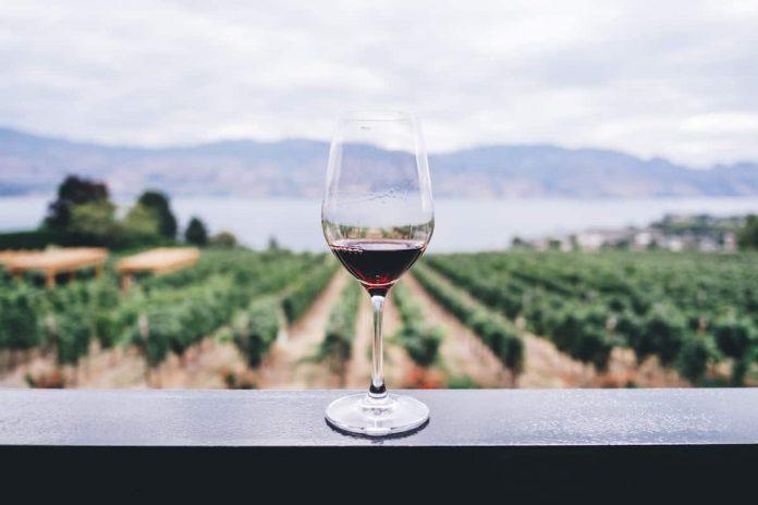 Baja California será la sede del Congreso Mundial de la Viña y el Vino 2022