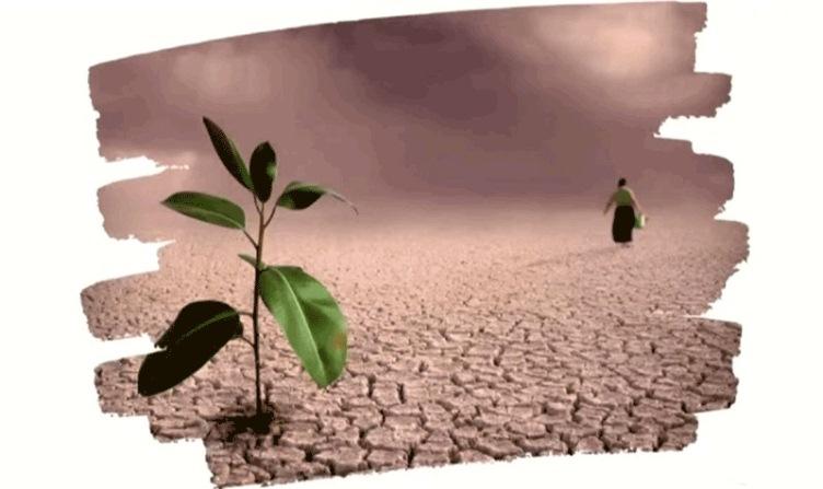 La sequía, un fenómeno con poco impacto en las políticas públicas: UAM