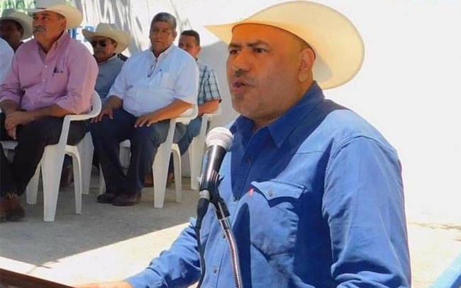 No quieren en Padilla los cocodrilos de Tampico