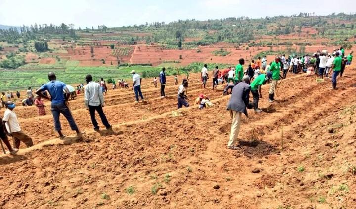 Agricultores de Nyaza agradecen sugerencia sobre el maíz en Ruanda